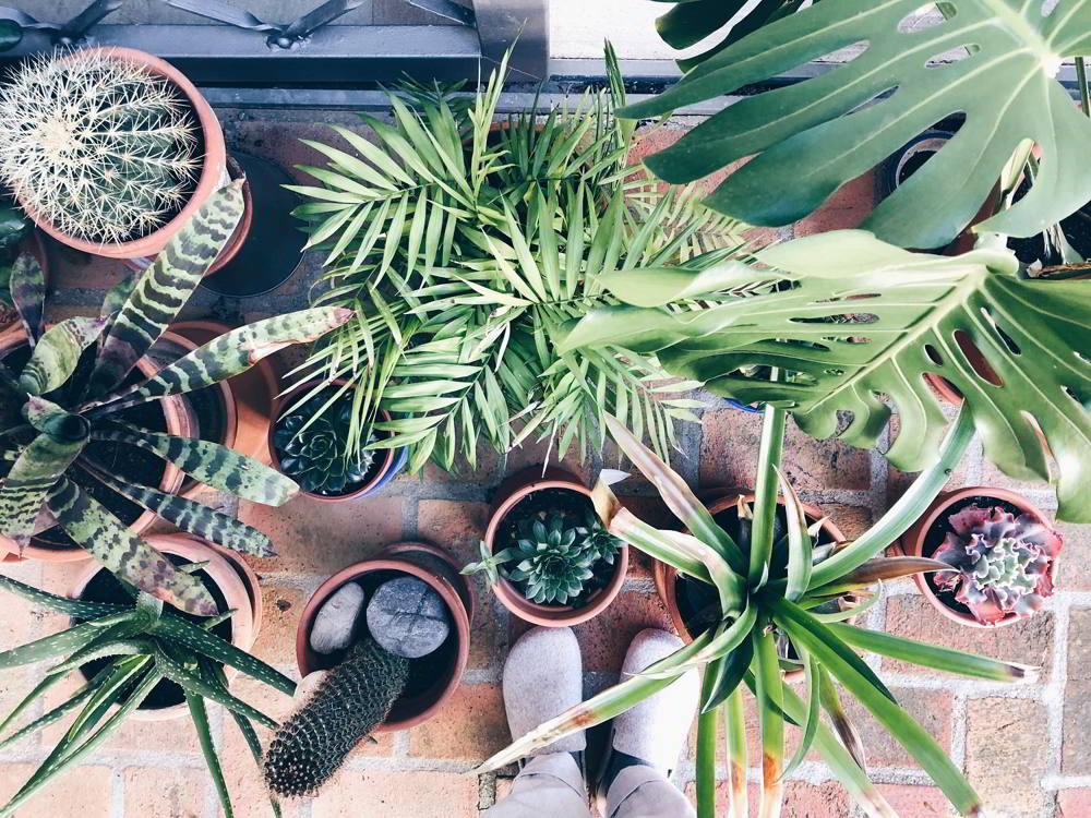 garden room balcon