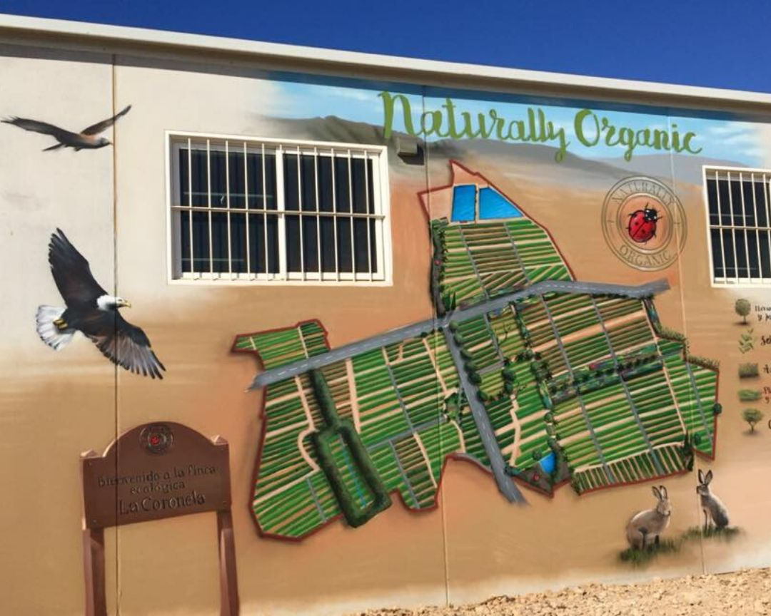 mural fachada nave agricultura