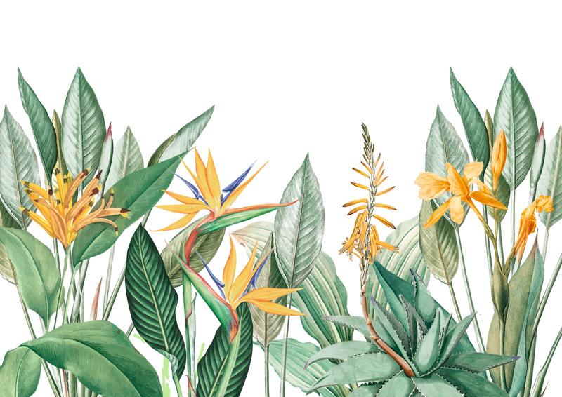 Mural-de-vegetacion-con-plantas-y-flores-tropicales